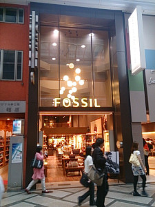2014.09.02-2Fossil